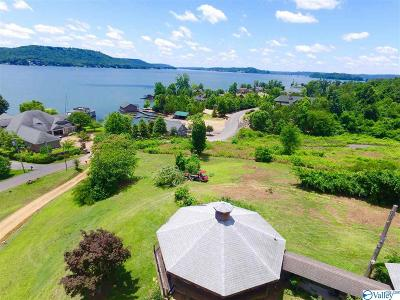 Guntersville Single Family Home For Sale: 1725 Buck Island Drive