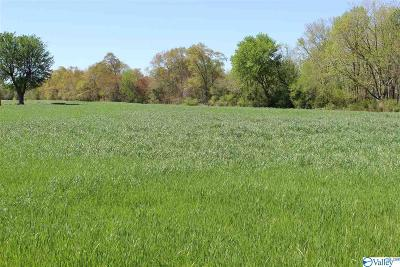 Fyffe Residential Lots & Land For Sale: 668 B Traylor Street
