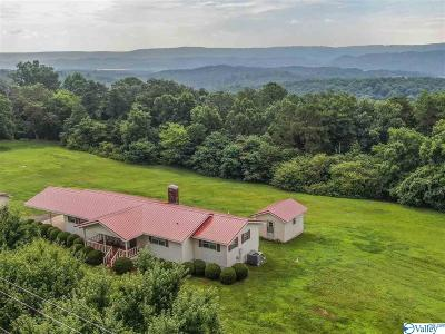 Fort Payne Single Family Home For Sale: 775 Mountain View Drive