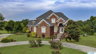 Rainsville Single Family Home For Sale: 135 Honeysuckle Drive
