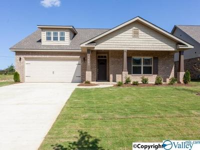 Meridianville Single Family Home For Sale: 209 Holt Street