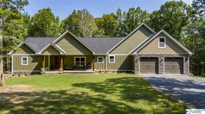 Fort Payne AL Single Family Home For Sale: $575,000
