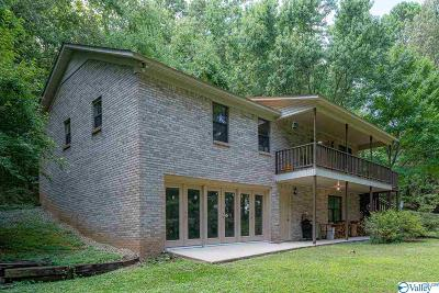 Decatur Single Family Home For Sale: 335 Harris Mountain Road