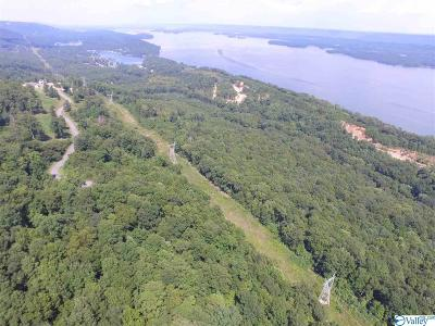 Marshall County, Jackson County Residential Lots & Land For Sale: 5843 Scottsboro Hwy