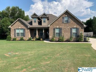 Decatur Single Family Home For Sale: 11 Derby Drive