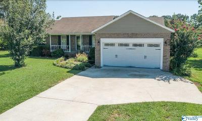 Rainsville Single Family Home For Sale: 186 Hodges Street