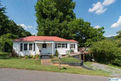 Fort Payne Single Family Home For Sale: 403 7th Street