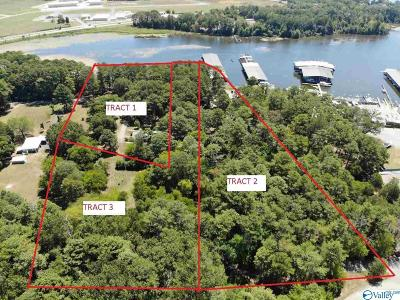 Guntersville Residential Lots & Land For Sale: 272-Tract 2 Marina Road
