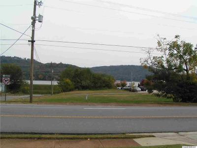 Guntersville Residential Lots & Land For Sale: Blount Avenue