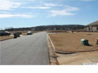 Residential Lots & Land Recently Sold: 124 Old Eli Road