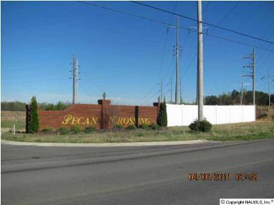 Albertville Residential Lots & Land For Sale: 75 Bonny Brook Lane