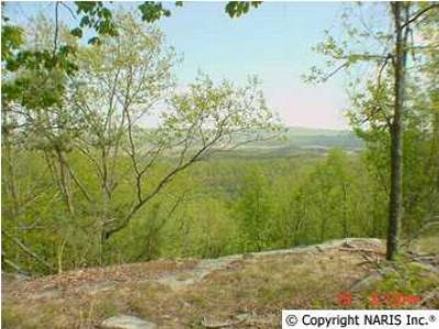 Residential Lots & Land For Sale: County Road 1010 #Lot 23