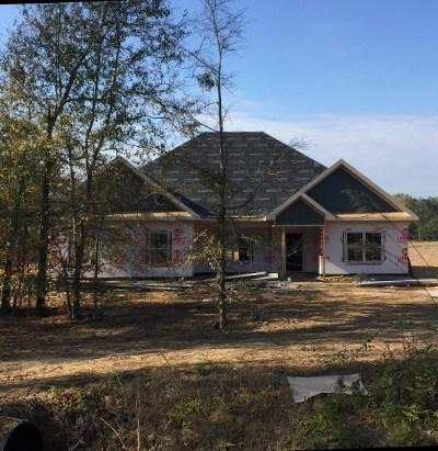 Salem Single Family Home For Sale: 334 Lee Rd 2154
