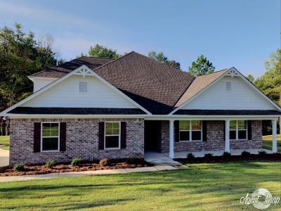Salem Single Family Home For Sale: 131 Lee Rd 2207