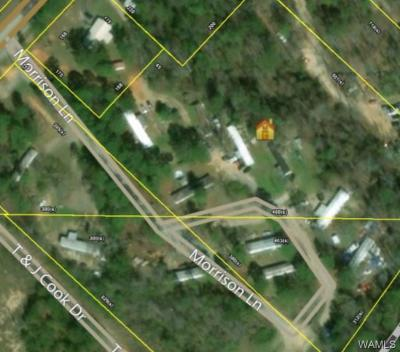 Cottondale Residential Lots & Land For Sale: 12009 Hwy 216