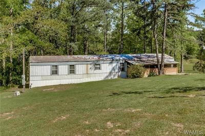 Coker Single Family Home For Sale: 13675 Preacher Street