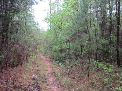 Northport Residential Lots & Land For Sale: Floyd Blackmon Road #4