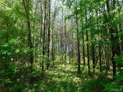 Northport Residential Lots & Land For Sale: N Hagler Rd (Co. Rd.)
