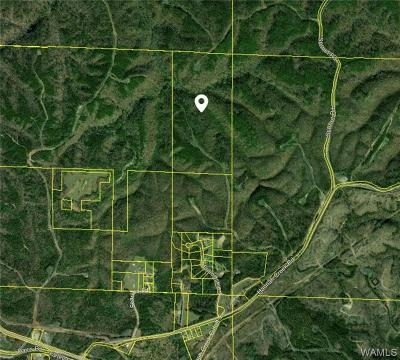 Brookwood Residential Lots & Land For Sale: 17048 Hannah Creek Road