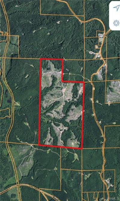 Buhl Residential Lots & Land For Sale: 14631 Tabernacle Road
