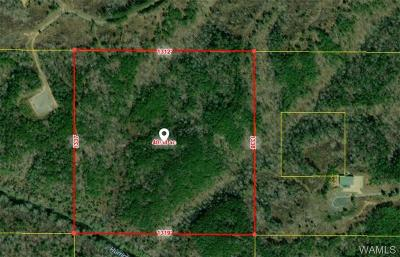 Brookwood Residential Lots & Land For Sale: 0- Chigger Ridge Road