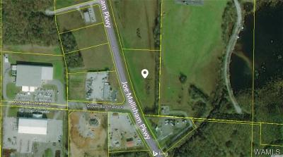 Residential Lots & Land For Sale: Joe Mallisham Parkway