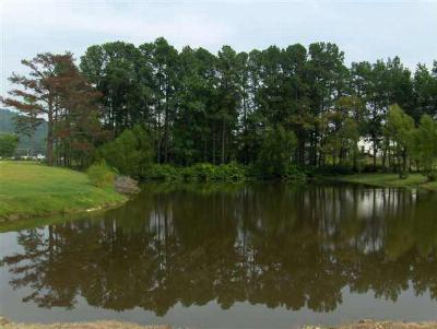 Garland County Residential Lots & Land For Sale: 166 Thornton Ferry Road