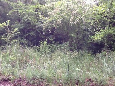 Independence County Residential Lots & Land For Sale: Cardinal Drive