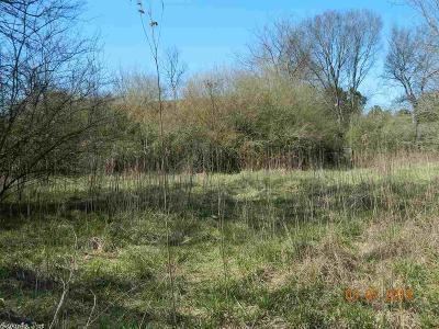 Clark County Residential Lots & Land For Sale: 139 Hot Springs Drive Drive