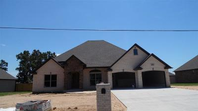 Paragould Single Family Home For Sale: 3806 Willow Lane