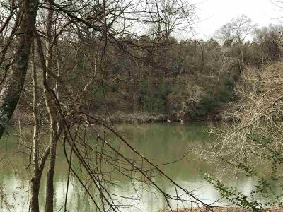 Arkadelphia Residential Lots & Land For Sale: Two Rivers Trail
