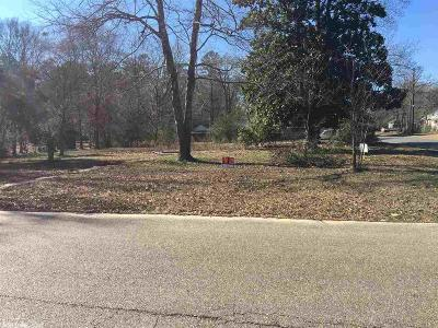 Ashley County Residential Lots & Land For Sale: 700 Hickory Street