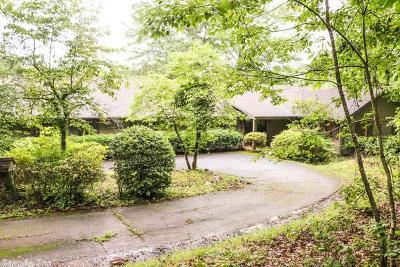 Little Rock Single Family Home For Sale: 3301 Green Bear Road