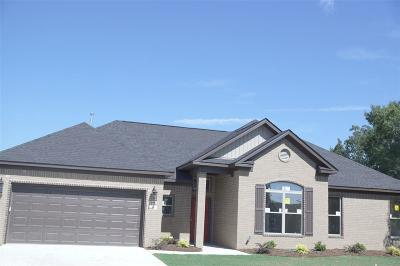 Otter Creek, Otter Creek Community, Otter Creek Phase Xi Single Family Home For Sale: 36 Rosewall