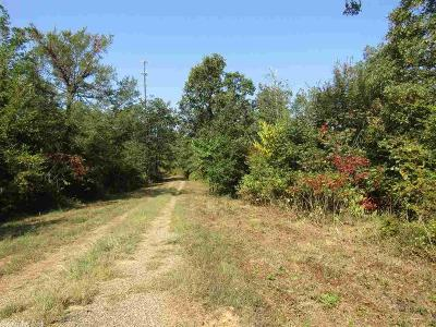 Glenwood Residential Lots & Land For Sale: Valley View