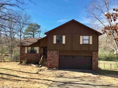 Jacksonville Single Family Home For Sale: 2804 General Samuels Road