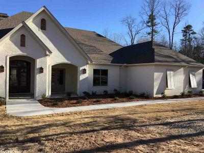 Little Rock Single Family Home For Sale: 1719 Vail Cove