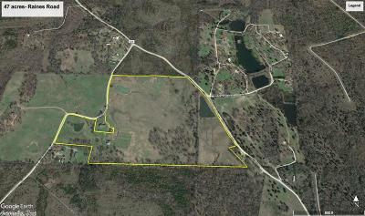 Residential Lots & Land For Sale: 47 acres Raines Road