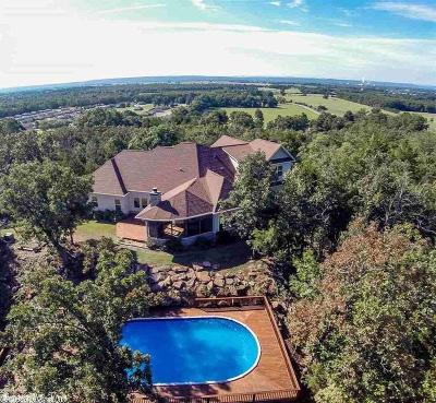 Morrilton Single Family Home For Sale: 33 Ray Road
