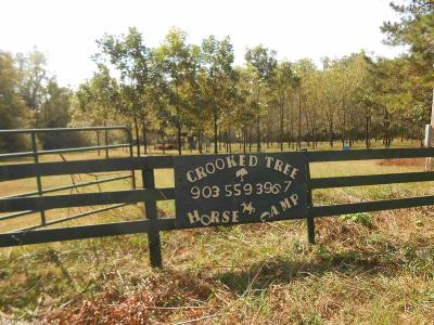 Pike County Single Family Home For Sale: 3115 Hwy 84 W