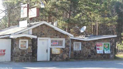Cleveland County Commercial For Sale: 3890 Highway 79