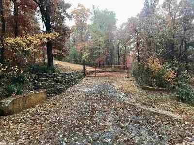 Van Buren County Single Family Home For Sale: 2251 Plant Church Rd