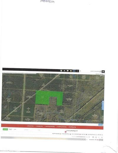 Clark County Residential Lots & Land For Sale: Pipeline Crossing