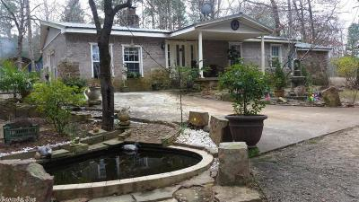 Dardanelle Single Family Home For Sale: 1876 Delaware Bay