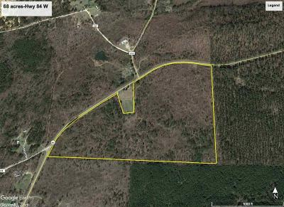 Residential Lots & Land Price Change: 68 acres Hwy 84 W