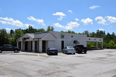 Hot Springs Commercial For Sale: 2223 Albert Pike