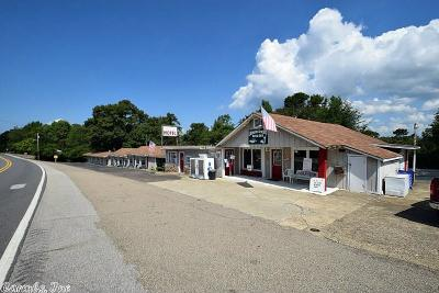 Commercial For Sale: 3983 Hwy 70 W