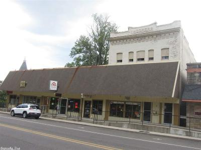 Hot Springs Commercial For Sale: 759 Park Ave