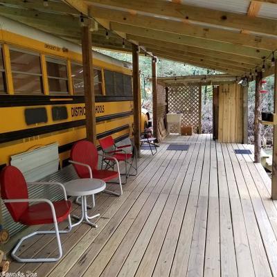 Van Buren County Single Family Home For Sale: 250 Sills Peninsula Road