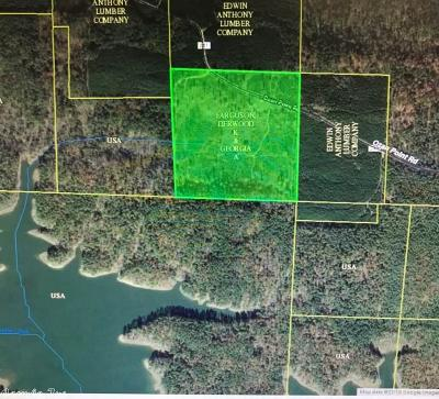 Clark County Residential Lots & Land For Sale: 549 Ozan Point Road